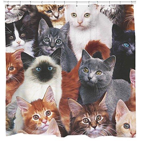 Katzen für Tage, Cat Duschvorhang von Sharp Shirter, multi, 180 cm x 188 cm(Standard)