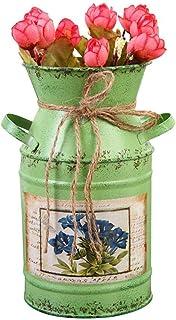 Vasi da fiori metallo mestieri domestici vintage chic cordini di canapa intrecciata ferro ornamenti secchi vasi vasi decorazione salotto scrivanie e balconi confezione da 2