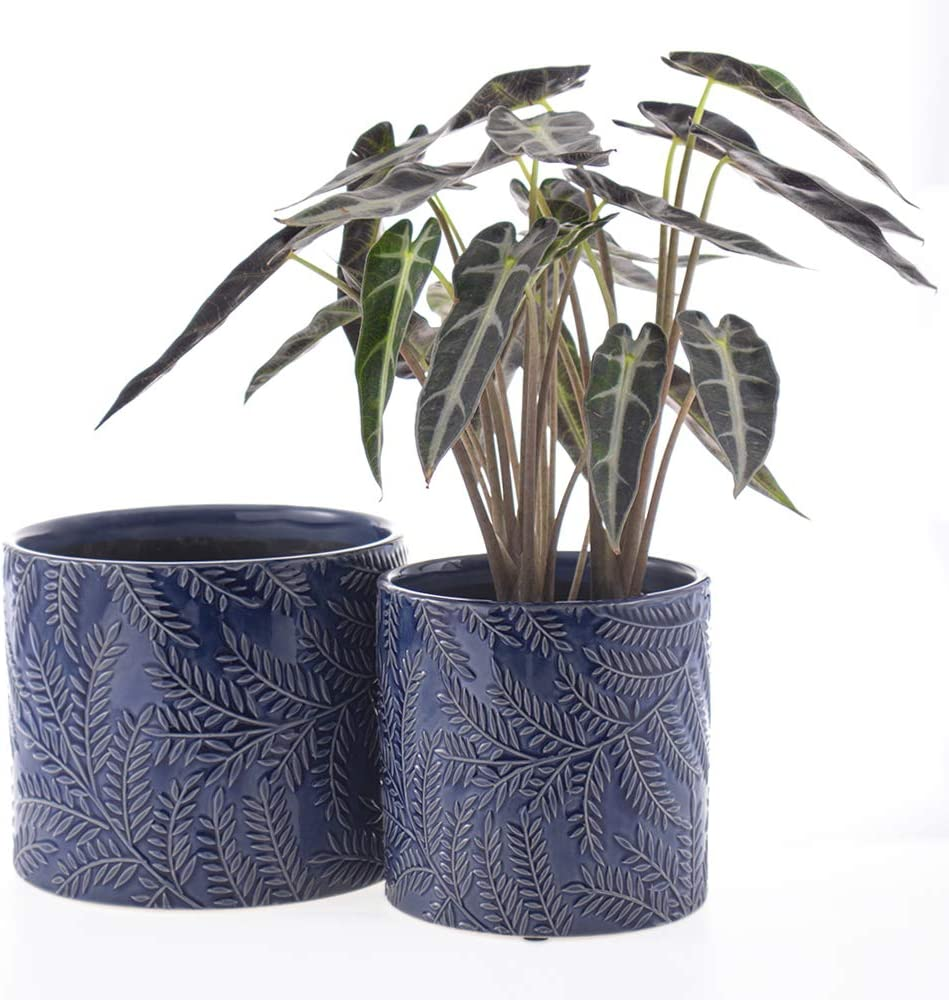 Nocuswao Ceramic Planters Garden Flower Pot 6.5 and 5.5 Inch Set of 2 , Indoor and Outdoor , Modern Plant Containers(Blue,Leaf Pattern Style)