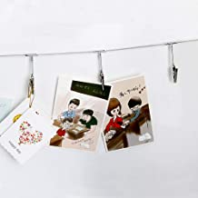 Multi-Purpose Steel Wall Hanging Photo Display Cable Wire Rod String with 12 Clips for Hanging Photos Notes and Artworks (...