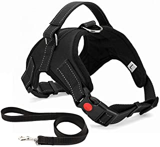 Musonic No Pull Dog Harness, Breathable Adjustable Comfort, Free Leash Included, for Small Medium Large Dog, Best for Trai...