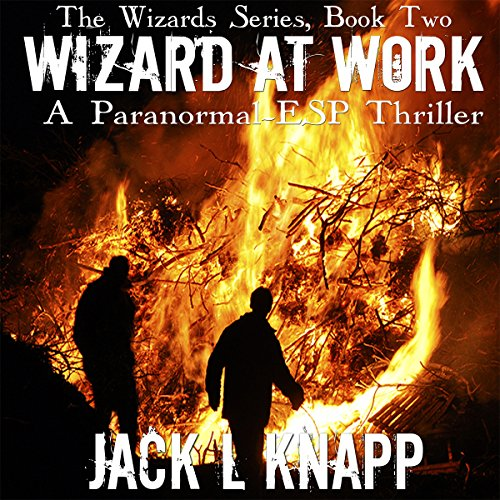 Wizard at Work audiobook cover art