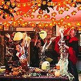 Lichterkette Herbst, 3m 30 Led Herbst Dekoration, HerbstbläTter Deko, Ahornblatt Lichterketten für Türrahmen Landhaus Garten TreppengeläNder, Tischdeko Fensterdeko Erntedank Thanksgiving Halloween - 7