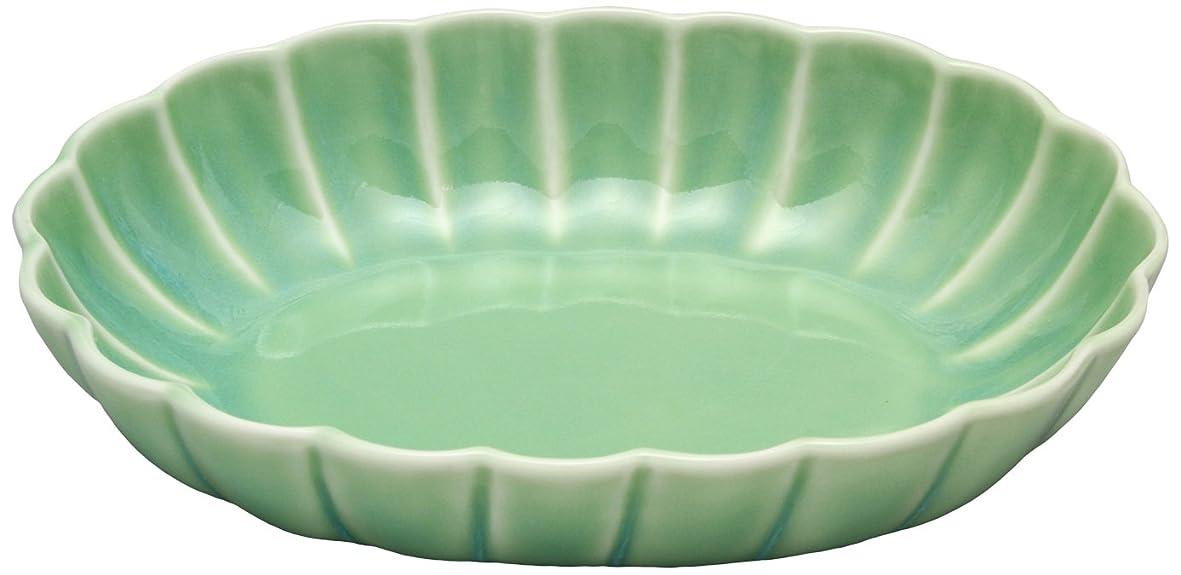 アクティビティヒューム太陽伊万里焼 菊型小判鉢 もえぎ釉