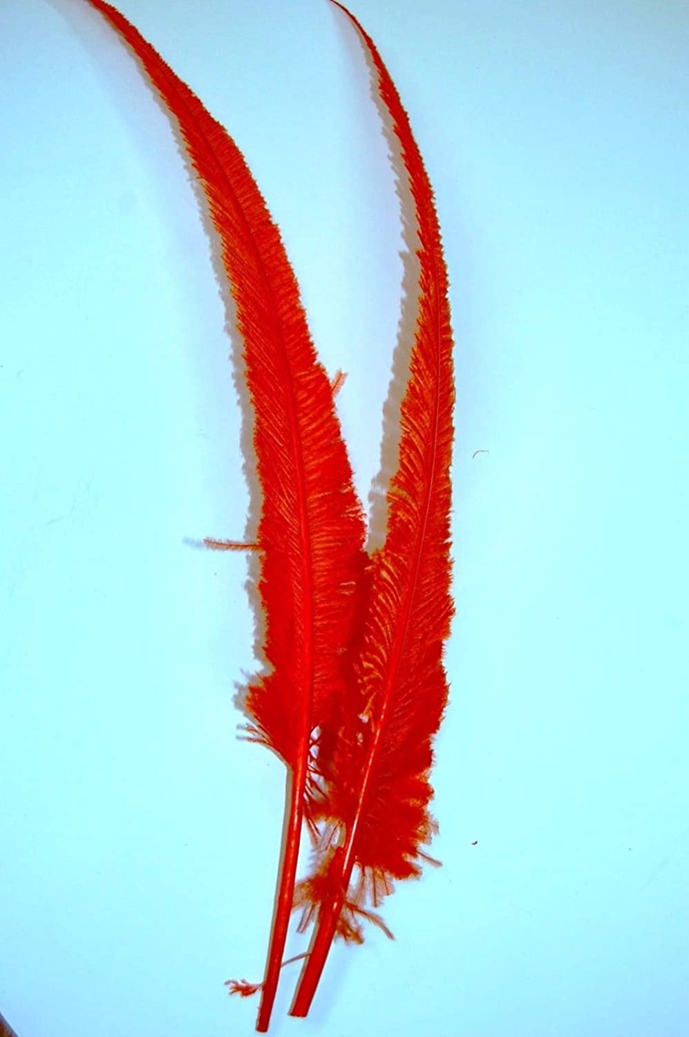 Max 44% OFF Xucus Wholesale Don't miss the campaign 50pcs Red Dyed Nandu Feathers 18-28inch Ostrich
