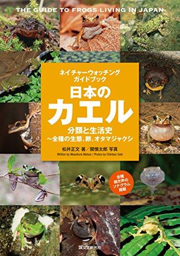 日本のカエルamazon参照画像
