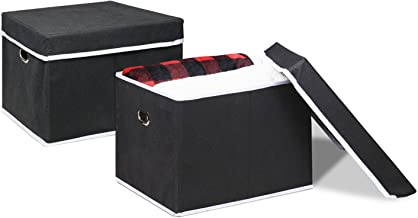 FURINNO Non-Woven Fabric Heavy-Duty Storage Organizer (2 Pack), Black