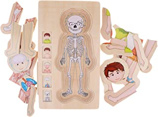 Baosity 5 Layers Wooden Puzzle Boy Body Structure Puzzle Jigsaw for Kids Toddlers
