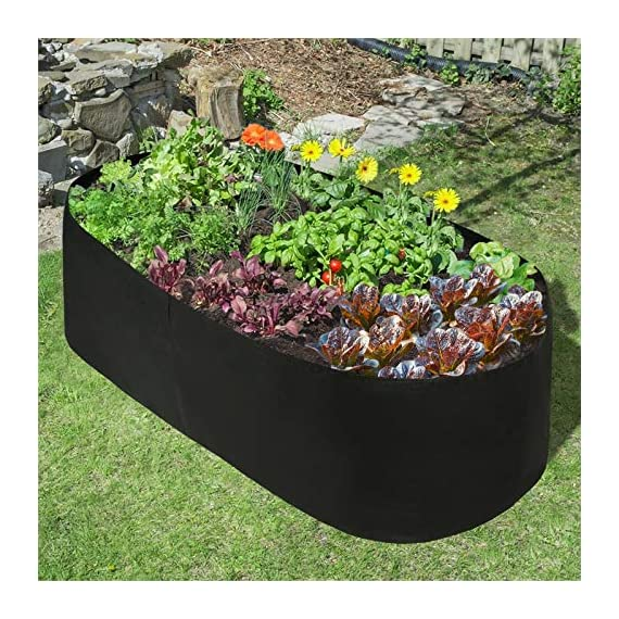 pannow Fabric Raised Planting Bed, Garden Grow Bags Herb Flower Vegetable Plants Bed Rectangle Planter for Plants… 4 ★Space-saving Gardening - Just enjoy the fun of growing your own organic vegetables and fruits; Our planting container is perfect for plants, flowers and fresh herbs, vegetables, fruits etc. ★Premium Material - Made of a proprietary fabric material, a highly durable, UV resistant, non-woven fabric that provides exceptional air flow throughout the soil and root systems and allows excess moisture to easily drain away ★Considerate Design - Plants will grow above the natural ground level with our fabric raised garden bed, which makes tending your garden much easier as you can weed, prune, water and harvest your crop with less stooping and bending; Ideal for anyone with back or joint problems