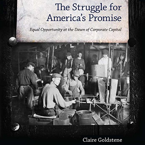 The Struggle for America's Promise audiobook cover art
