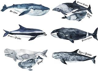 Sharks Undersea Wall Stickers Ocean Whale Wall Sticker Peel and Stick Wall Art Sticker Decals for Kids Boys Girls Bedroom ...