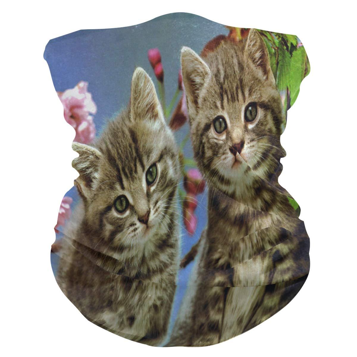 I LOVE ANIMALS Cats Face Mask Bandanas UV Protection Neck Gaiter Breathable Anti Dust Masks