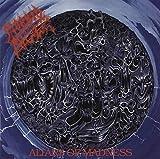 Songtexte von Morbid Angel - Altars of Madness