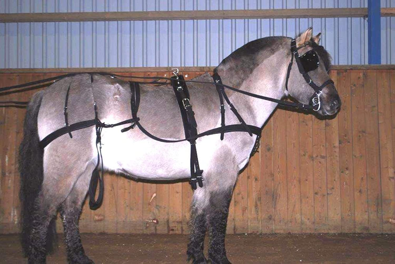 Cwell Equine Strong NYLON HORSE DRIVING CART HARNESS WITH SADDLE BRIDLE etc  D F C P S M black