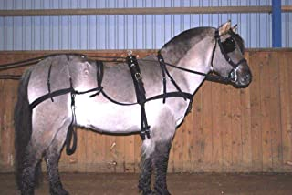 Cwell Equine Strong Nylon Horse Driving CART Harness with Saddle Bridle etc - D/F/C/P/S/M Black (Shetland)