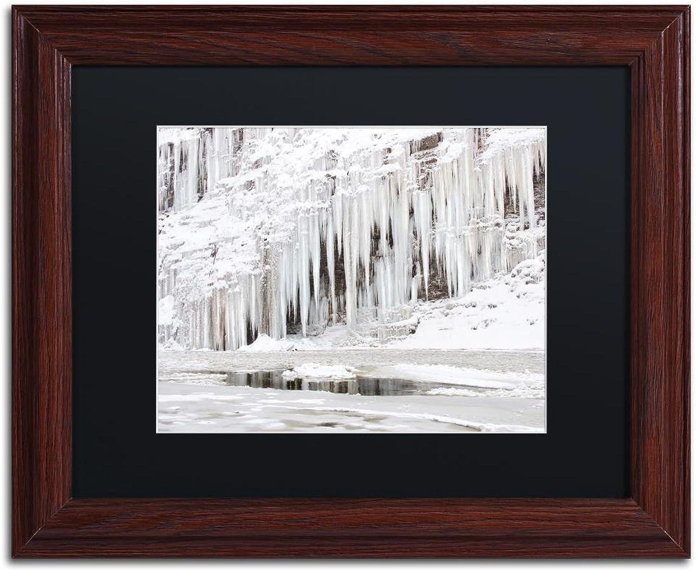 Trademark Fine Art Mill Hollow Ice by Jason Shaffer, Black Matte, Wood Frame, 11  X 14