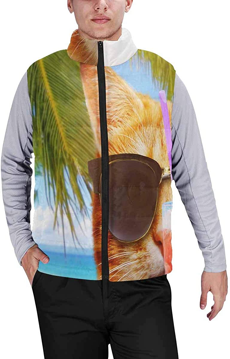 InterestPrint Men's Lightweight Vest Softshell for Camp a Cat with Cocktail on the Beach M
