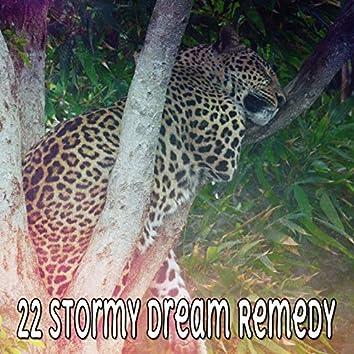 22 Stormy Dream Remedy