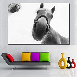 Posters Prints Pictures Wall Art White Horses Closeup Snout Nose Gray background Paintings For Living Home Decor Animal Po...