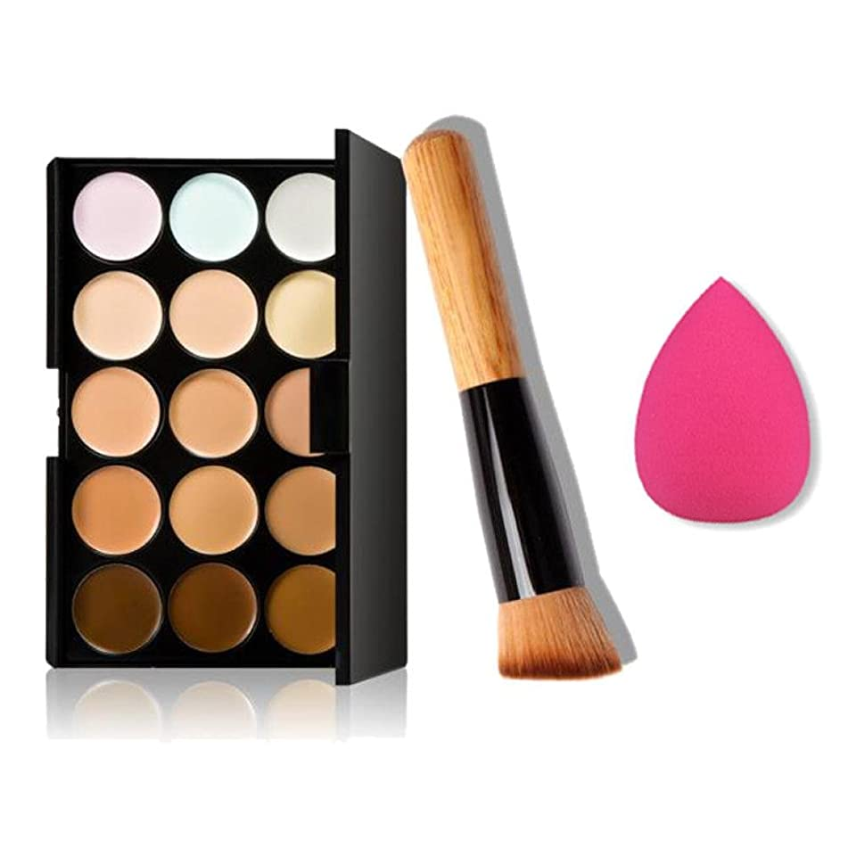 Ninasill 15 Colors Makeup Concealer Contour Palette + Water Sponge Puff + Makeup Brush (Multicolor)