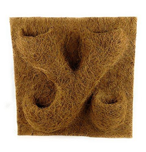 proflora Kokosfaser Terrarium Rückwand 50x50cm mit 4 Pflanztaschen / Pflanzmulden - Kokosmodul - Kokosfaser Matte - Design 1, natur