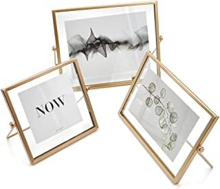 AceList Set of 3 Rose Gold Pressing Glass Photo Frame Collection Metal Picture Frame Decor with Plexiglas Cover Includes 4