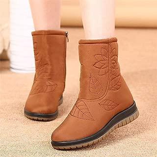 Women Boots Winter Shoes Women Plus Insole Snow Boots Fur Ankle Boots for Women Waterproof Winter Shoes