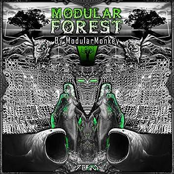 Modular Forest