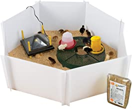 Premier Heating Plate Brooder Kit for Up to 24 Chicks