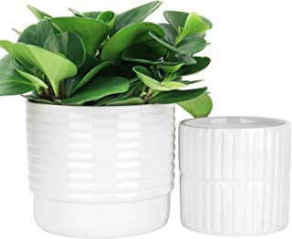 LA JOLIE MUSE Ceramic Planter Set of 2 - 6.5 Inch Ridged Flower Pot with Drain Hole for Indoor, Horizontal and Vertical Ri...