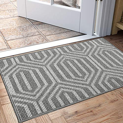 DEXI Indoor Doormat Non Slip Absorbent Resist Dirt Entrance Rug 24 x36 Machine Washable Low product image