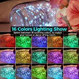 LTETTES Battery Powered 16 Colors Multi Color Color Changing Fairy Lights Multi Color Copper LED String Light with Remote for Wedding Part Bedroom Christmas Tree Diwali Decoration (5 Meters) …