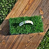 SodPods Bermuda Grass Plugs (32-Count) Natural, Affordable Lawn Improvement - Cannot Ship to CA/AZ