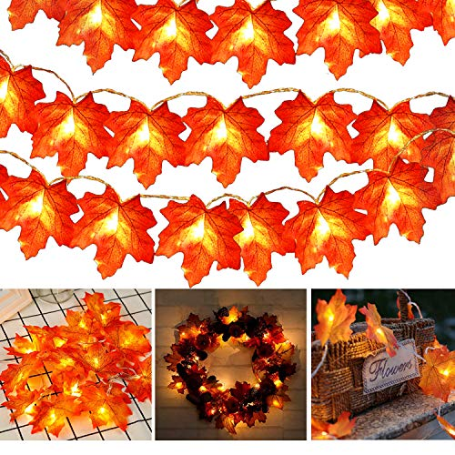 Toodour Thanksgiving Decorations Lights, Fall Maple Leaves String Lights, 20ft 40 LED Fall Lights Battery Operated Orange Red Halloween Lights...