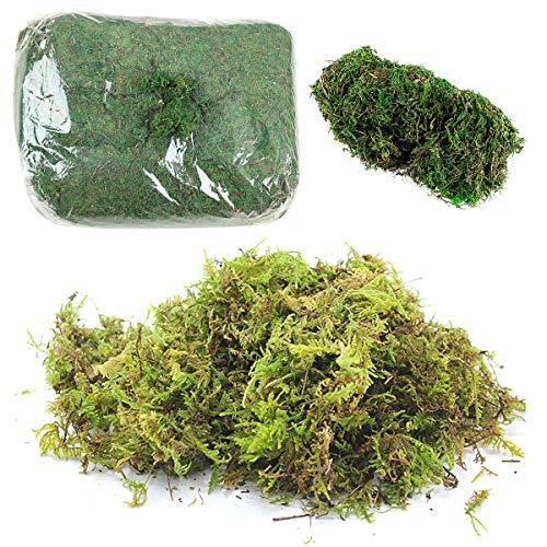Qixuer 2 Paquetes de Simulación Artificial de Musgo,Planta Simulada de Musgo Verde Simulación de liquen Artificial Lichen Verde Falso Musgo para Plantas Patio Jardín Decoración del Hogar