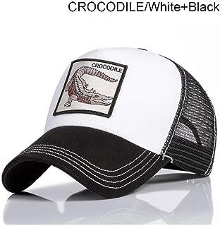 Amazon.es: / - Última semana / Sombreros y gorras / Accesorios: Ropa