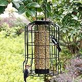 SAND MINE Wild Bird Feeder, Caged Tube Feeder, Squirrel Proof Outdoor Birdfeeder with Large Mesh Metal Seed Guard Deterrent for Large Birds, Black