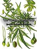 The Hemp Conspiracy - The...