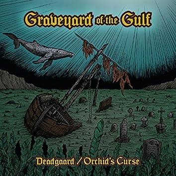 Graveyard of the Gulf
