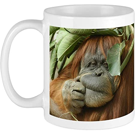 3drose Bornean Orangutan Primate Borneo Malaysia Mug 11 Oz Black Kitchen Dining