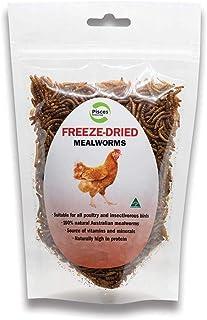Pisces Enterprises Freezedried Mealworm Poultry Treats 70 gm