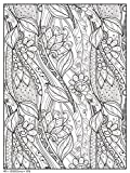 Trends International Decorative Floral 18'x 24' Coloring Poster