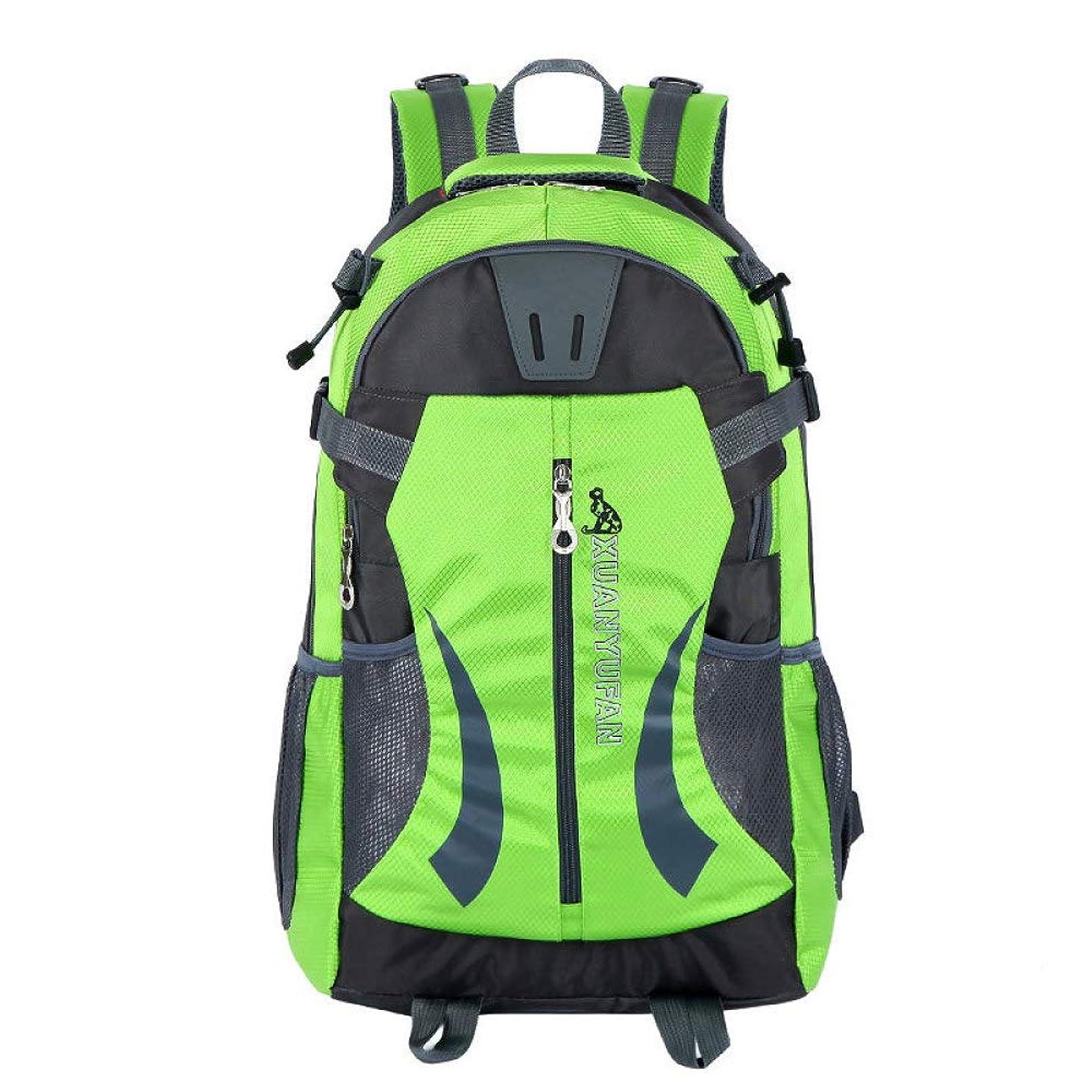 拾う勤勉南東バックパック女性バックパックファッション女性ショルダーバッグ無地スクールバッグ用十代の少女子供バックパック旅行バッグ