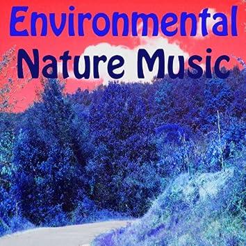 Environmental Nature Music (Vol. 4)