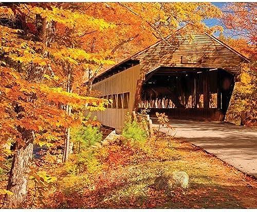 te hará satisfecho Springbok Autumn Coverojo Bridge 1000 Piece Jigsaw Puzzle by by by Springbok  compras online de deportes