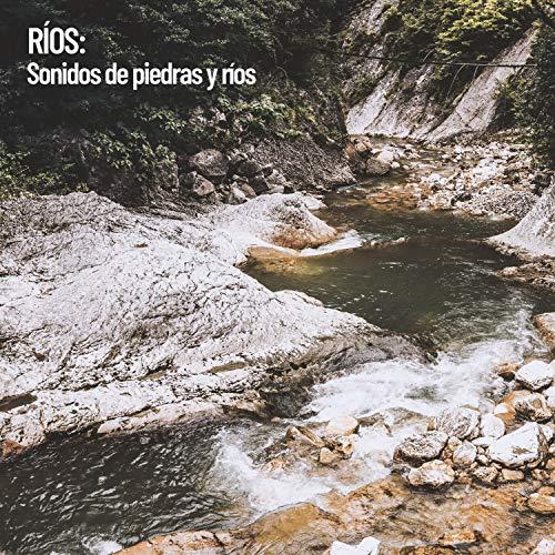 Movimiento del río a través de la piedra