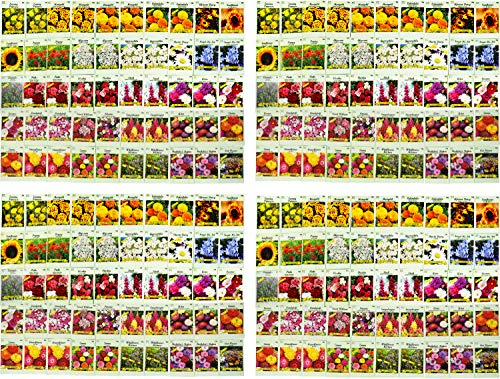 Set of 200 Assorted Flower Seed Packets! Flower Seeds in Bulk - 20+ Varieties Available!