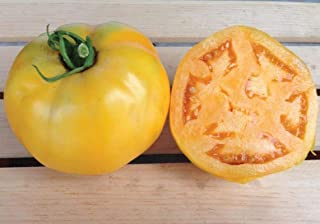 Golden Jubilee Tomato Seeds - Meaty, thick, golden-orange skin!! Delicious!!!!(10 - Seeds)