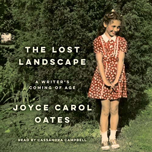 The Lost Landscape audiobook cover art