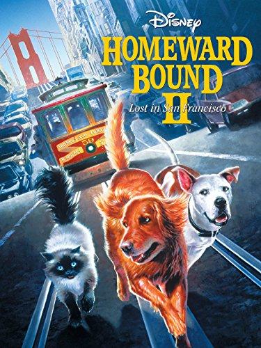 Homeward Bound Ii: Lost In San F...